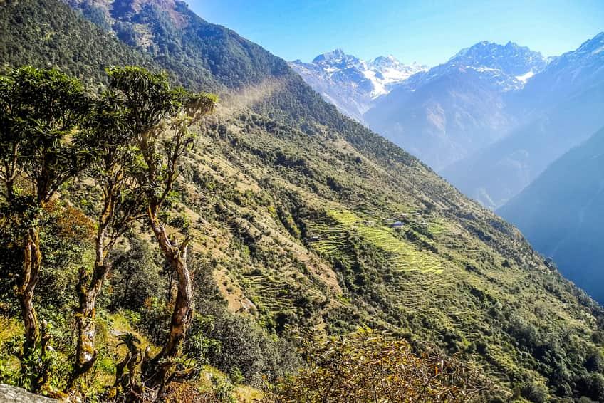 Lantang valley trek