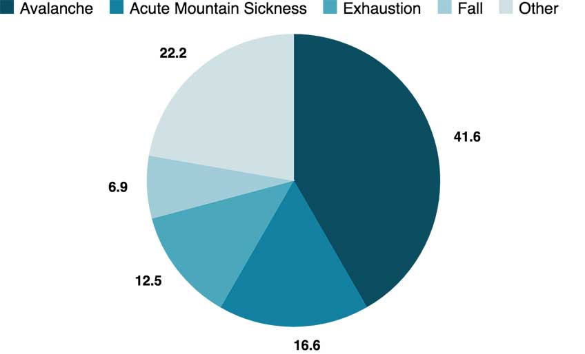 Cause of Death in Mount Everest infographic chart